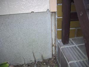 玄関横の外から蟻道