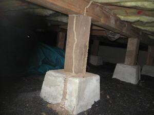炭を敷き詰めた下から蟻道は出てきて、シロアリは発生しました。